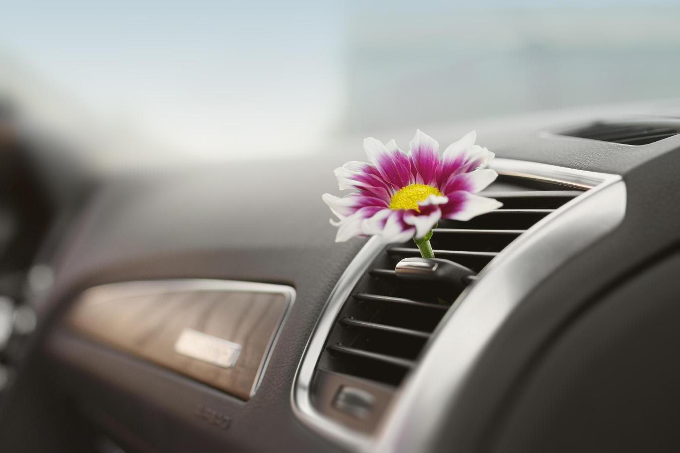 Jaki zapach do samochodu będzie dobrym wyborem? Na co warto zwrócić uwagę, wybierając zapach do auta?